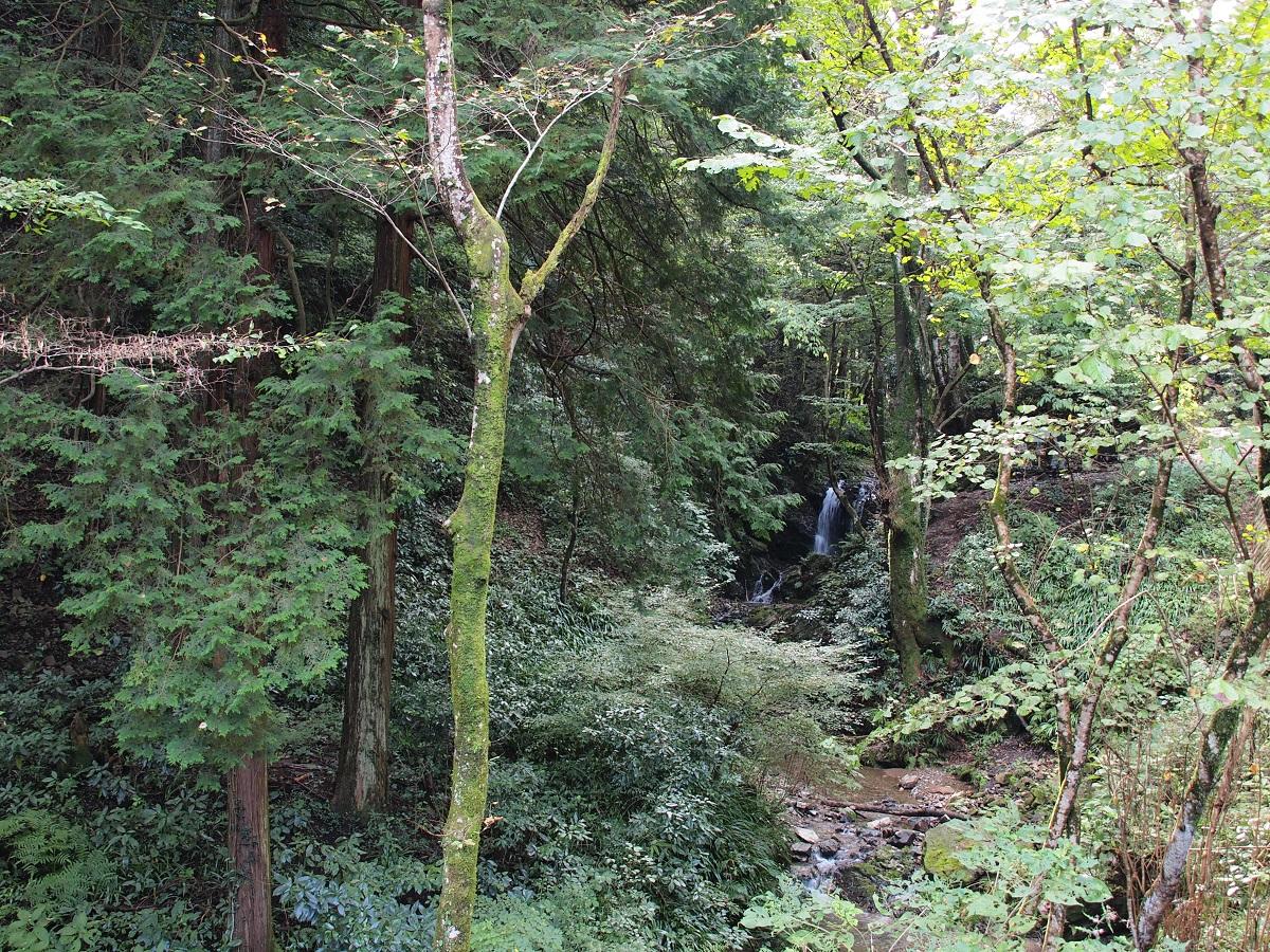 御主殿の滝E0512930.jpg